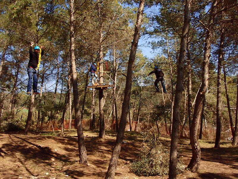 Aventura-bosc-vertical-Bruixola-03